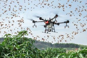 t16-drones-locusts
